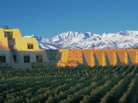 CATENA ZAPATA被评为2020年世界最受喜爱的葡萄酒品牌